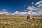 picture of yurt  - Traditional yurt of nomadic tribe on green grasslands in Kyrgyzstan - JPG