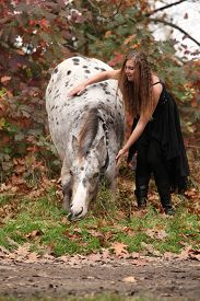 picture of appaloosa  - Pretty young woman with appaloosa horse in autumn