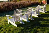 stock photo of lawn chair  - White Adirondack chairs in a row with evening light - JPG