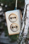 stock photo of extend  - The old socket the extender near a tree - JPG