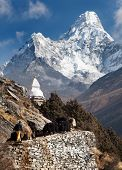 stock photo of caravan  - View of Ama Dablam with stupa and caravan of yaks  - JPG
