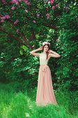 image of lilac bush  - Young beautiful girl in a long dress and a wreath of flowers in the garden of lilac bush - JPG