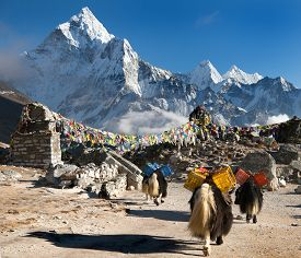 stock photo of caravan  - Ama Dablam with caravan of yaks and prayer flags  - JPG