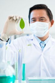 picture of photosynthesis  - Man studying photosynthesis in the laboratory alone - JPG