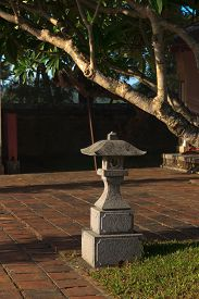 pic of luminaria  - Garden Light for lighting and garden decor - JPG