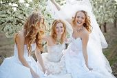 Three happy beautiful brides together