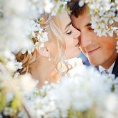 stock photo of wedding couple  - Kissing wedding couple in spring nature close - JPG