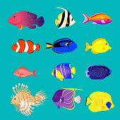 ������, ������: Set of Sea Fish Color Design Flat