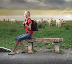 foto of sitting a bench  - Young woman sitting on a bench in front of a green meadow with animals - JPG