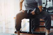 biceps poster
