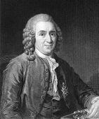 Carl Linnaeus (1707-1778). Engraved by C.E.Wagstaff and published in The Gallery Of Portraits With M