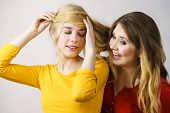 Woman Playing With Her Female Friend Long Ombre Color Hair. Different Hairdo Colors, Haircare And Ha poster