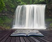 stock photo of carnivorous plants  - Creative composite image of waterfall in woods in pages of magic book - JPG