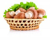 pic of crimini mushroom  - Fresh field mushroom in basket and Leaves of green salad Isolated on white background - JPG