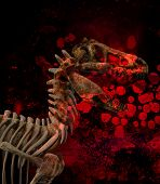 stock photo of dinosaur skeleton  - A Dinosaur skeleton against a bloody background - JPG
