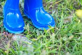 image of swales  - dark blue wellington boots on the green grass - JPG