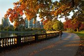 stock photo of early morning  - An early morning jogger on the Stanley Park Seawall in autumn - JPG