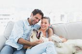 pic of labradors  - Happy couple petting their yellow labrador on the couch at home in the living room - JPG