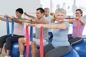 stock photo of senior class  - Class holding out exercise belts while sitting on fitness balls in yoga class - JPG