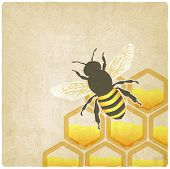 pic of beehives  - bee honeycomb old background  - JPG