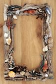 picture of driftwood  - Driftwood and sea shell abstract border over oak wood background - JPG