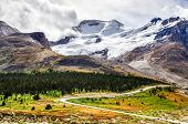 picture of rocky-mountains  - Landscape view of Columbia glacier in Jasper NP Rocky Mountains Canada - JPG