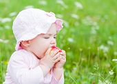 foto of nibbling  - Photo of an adorable baby girl nibble an apple - JPG