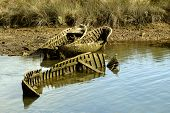 picture of life-boat  - still life composition formed by abandoned boats and completely destroyed - JPG