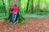 stock photo of count down  - Man counting down for hide and seek played in a forest - JPG