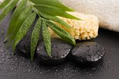image of pumice-stone  - Green leaf on spa stone on wet black surface - JPG