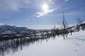 picture of blue ridge mountains  - View of a snowy - JPG