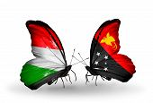 stock photo of papua new guinea  - Two butterflies with flags on wings as symbol of relations Hungary and Papua New Guinea - JPG