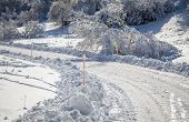 picture of snowy-road  - Snowy road in forest at region Liptov - JPG