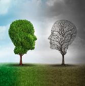picture of mood  - Human mood and emotion disorder concept as a tree shaped as two human faces with one half full of leaves and the opposite side empty branches as a medical metaphor for psychological contrast in feelings - JPG