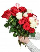 pic of bunch roses  - two hands giving bunch of many roses isolated on white background - JPG