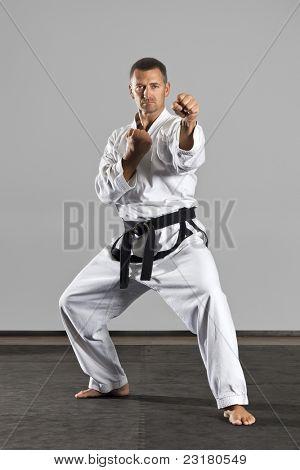 Постер, плакат: Изображение мастер боевых искусств, холст на подрамнике