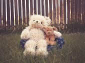 teddy bear on a couch with arm around a stuffed pet dog toned with a retro vintage instagram filter poster