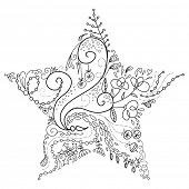 picture of christmas star  - christmas star - JPG