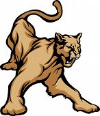 stock photo of cougar  - Graphic Mascot Vector Image of a Cougar Growling - JPG