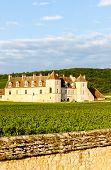 foto of clos  - Clos Blanc De Vougeot Castle - JPG