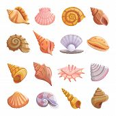 Sea Shell Beach Icons Set. Cartoon Illustration Of 16 Sea Shell Beach Tropical Underwater Vector Ico poster