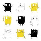 Vector Cartoon Sketch Funny Cat Illustration poster