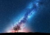 Trees Against Starry Sky With Milky Way. Space poster