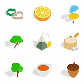 Vegan Dish Icons Set. Isometric Set Of 9 Vegan Dish Vector Icons For Web Isolated On White Backgroun poster