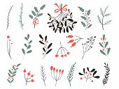 Hand Drawn Vector Winter Elements. Christmas Floral. Christmas Branches. Perfect For Invitations, Gr poster