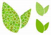 Plant Leafs Mosaic Of Uneven Parts In Different Sizes And Color Hues, Based On Plant Leafs Icon. Vec poster