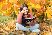 Hobby And Interests. Child Enjoy Reading. Schoolgirl Study. Study Every Day. Girl Read Book Autumn D poster