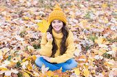 Turning Over A New Leaf. Happy Small Girl On Autumn Day. Small Kid Smile Sitting On Fall Leaves. Sma poster