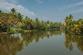 picture of alleppey  - Indian tropical landscape - JPG