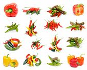 stock photo of jalapeno  - Collection of Various Peppers with Red and Yellow Bell Peppers Chili Peppers Red Habanero Green Jalapeno and Yellow Santa Fee isolated on white background - JPG